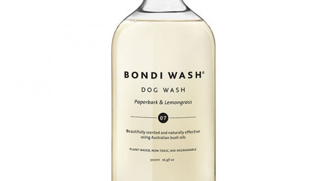 dog wash-peppermint-and-rosemary-1